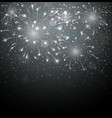 Beautiful fireworks on night background vector image vector image