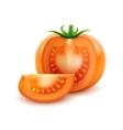 big ripe orange fresh cut tomato on background vector image vector image