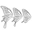 butterfly wings vector image vector image
