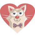 cute cat cartoon character mascot vector image vector image