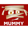 Mummy wrapped with cloth vector image