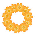 orange yellow cosmos flower wreath vector image