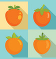 persimmon icon set flat style vector image vector image