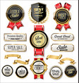 retro vintage gold and black badges and labels vector image