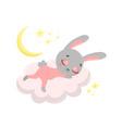 a cute cartoon bunny sleeping vector image