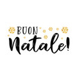 buon natale quote in italian as logo or header vector image vector image