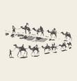caravan camels desert rawn sketch drawn vector image
