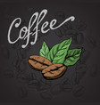coffee grains and leaves vector image vector image