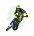 cyclist on a mountain bike on white background vector image vector image