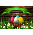 Easter egg nest with Wood texture vector image vector image