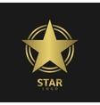Golden Star Logo vector image vector image