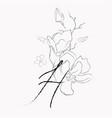 handwritten line drawing floral logo monogram h vector image vector image