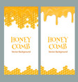 honey flyers with text vector image vector image