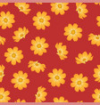 orange yellow cosmos flower on red background vector image