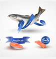 set salmon fillet steak and fish salmon vector image