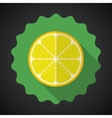 Lemon Orange Fruit Flat Icon with long shadow vector image