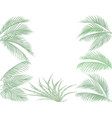 leaves of tropical palms in pastel tones set vector image