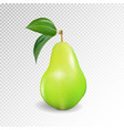 pear realistic 10eps green pear punching vector image vector image