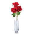 roses in a glass vase isolated realistic 3d vector image