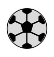 soccer ball cartoon vector image