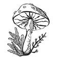 unhealthy poisonous amanita mushroom drawing vector image vector image