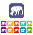 wild elephant icons set vector image vector image
