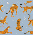 abstract leopard pattern on dreamy celestial vector image vector image