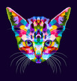colorful kitten on abstract pop art vector image vector image