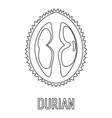 durian icon outline style vector image vector image
