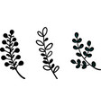 flowers black silhouette on a white background vector image vector image
