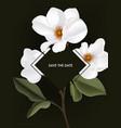 greenery magnolia flower stem botanical holiday vector image vector image