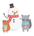 snowman squirrel and raccoon with scarf vector image
