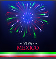 festive mexican banner card with colorful vector image