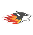 fire wolf abstract logo icon concept vector image