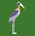 greater adjutant stork cartoon bird vector image vector image