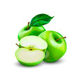 green apples with leaves and apple slice vector image