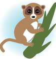 lemur on green branch on white background vector image