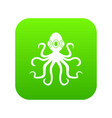 octopus icon digital green vector image