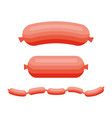 sausages product of meat beef pork or chicken vector image