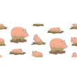 seamless pattern with pigs vector image vector image