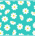 white cosmos flower on blue mint background vector image vector image