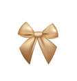yellow golden bow vector image