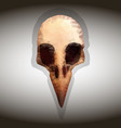 bird s skull drawing in the style of vector image
