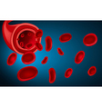 Blood vector image vector image