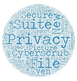 CyberScrub Privacy Suite Review text background vector image vector image