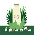 farming today a milk bottle on floral background vector image vector image