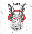 hipster animal rabbit with headphones vector image