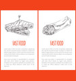 junkfood poster with triangle sandwich and burrito vector image vector image