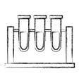 laboratory test tubes vector image vector image