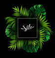 sale banner with tropical palm and monstera leaves vector image